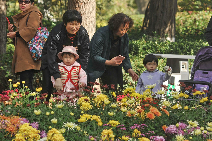 Seniors take their grandchildren to admire chrysanthemum at a park in Tianshui, Gansu province, Oct. 19, 2020. Sui Zhen/People Visual