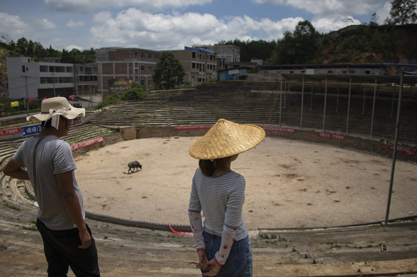 Huang Fei (left) and her older brother Huang Chao visit a bullfight arena in Guangshun Town, Guizhou province, October 2020. Kenrick Davis/Sixth Tone