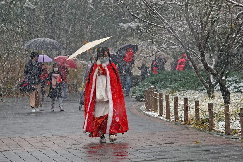 "On the city's first snow day ahead of winter, a woman in traditional ""hanfu"" clothing walks through the botanical garden in Beijing, Nov. 21, 2020. Wang Xibao/IC"