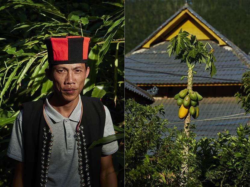 Left: A portrait of Huang Zhicheng, wearing a traditional Yao ethnic hat; right: A papaya tree in Hebian Village, Yunnan province, Nov. 1, 2020. Wu Huiyuan/Sixth Tone