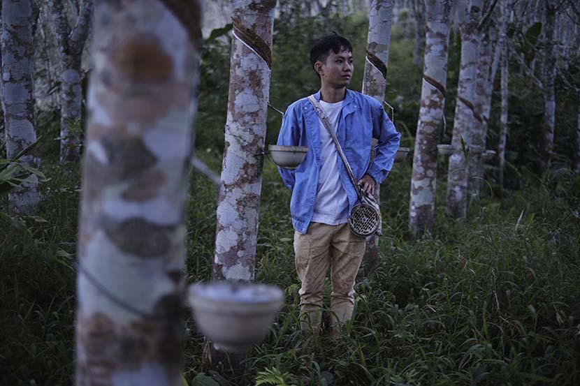 Li Jin, the cooperative's accountant, poses for a photo in Hebian Village, Yunnan province, Nov. 1, 2020. Wu Huiyuan/Sixth Tone