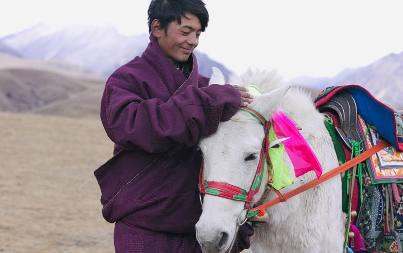 Tenzing Tsondu and his horse in Litang County, Sichuan province, 2020. From @时差岛 on Weibo