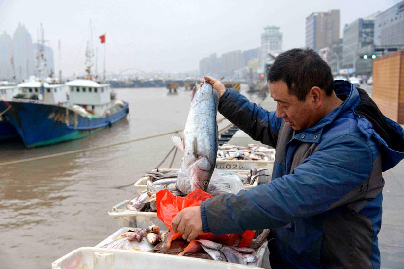 A fisher unloads crates of fish at Shenjiamen Fishing Port in Zhoushan, Zhejiang province, Dec. 19, 2020. Hu Sheyou/People Visual