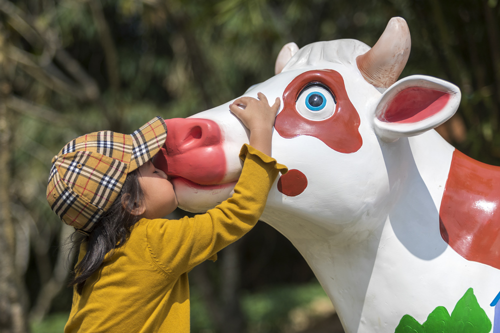 A girl kisses a cow statue in Tunchang County, Hainan province, Feb. 16, 2021. Li Taotao/People Visual