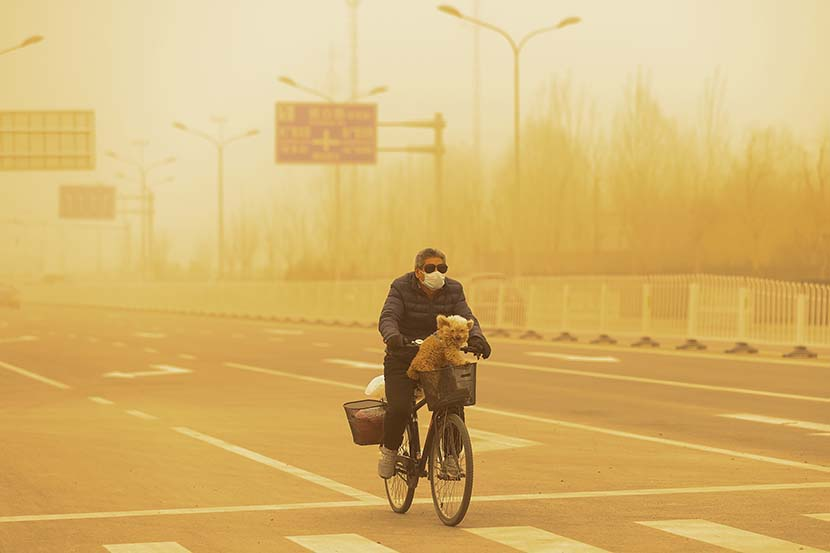 A man wearing sunglasses and a protective mask cycles with his dog during a sandstorm in Beijing, March 15, 2021. Getty Images/People Visual