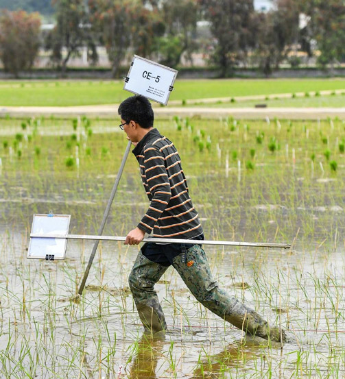 A young scientist attempts to mark a field containing seeds from the Chang'e 5 spacecraft in Guangzhou, Guangdong province, March 29, 2021. Liu Dawei/Xinhua