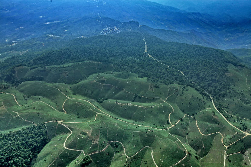 An aerial view of the mountains around Pu'er, Yunnan province, 2010. Courtesy of the China Biodiversity Conservation and Green Development Foundation