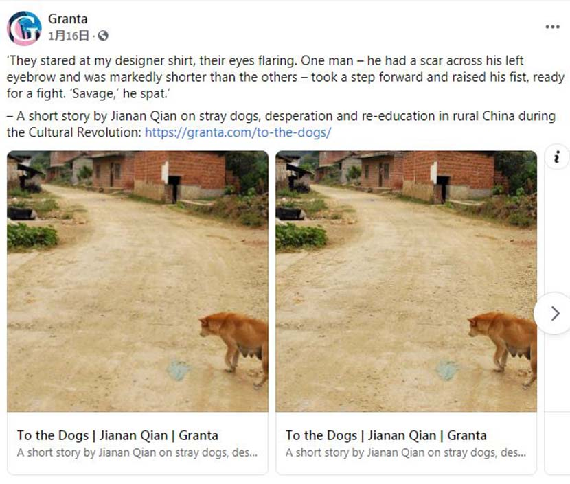 """A screenshot of a social media post by literary magazine Granta, announcing the publication of Jia'nan Qian's short story """"To The Dogs.""""  From Facebook"""