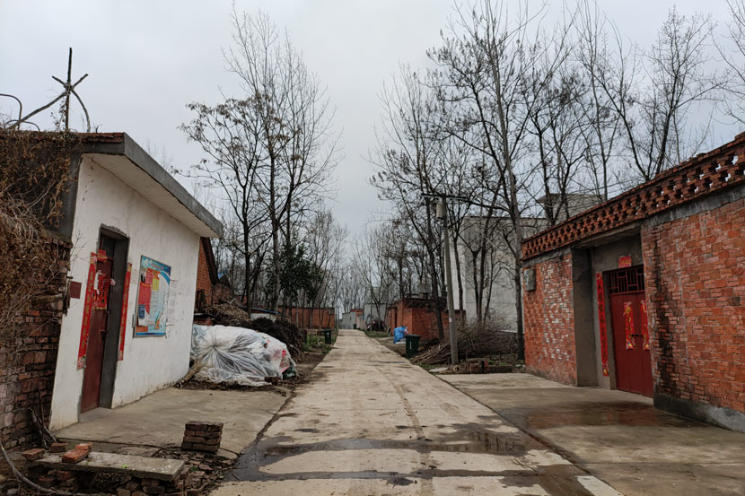 The bride's hometown of Zhuwa Village in Henan province, March 2021. Zhou Hang for Sixth Tone