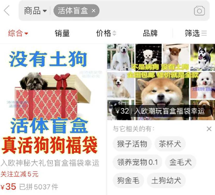 A screenshot shows a store advertising pet blind boxes on an e-commerce platform. From @天眼新闻 on Weibo
