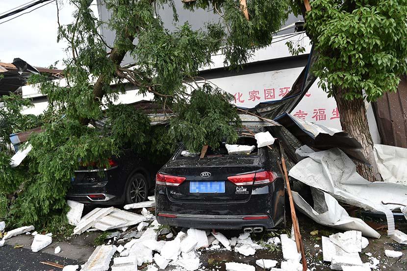 Trees fall after a tornado in Suzhou, Jiangsu province, May 15, 2021. People Visual