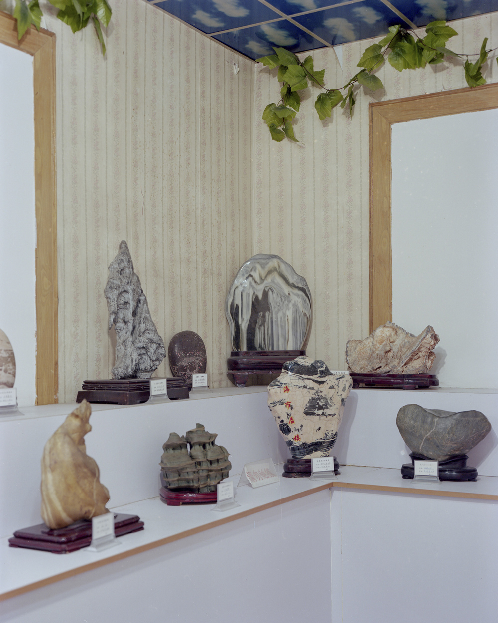 An exhibition showing stones collected from the forest park in Dazhai Village, Shanxi province, April 19, 2021. Shi Yangkun/Sixth Tone