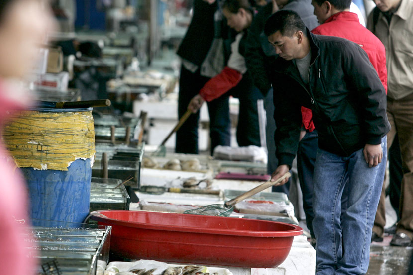 A customer examines the offerings at a market in Shanghai, April 9, 2008. Zhang Dong for Sixth Tone