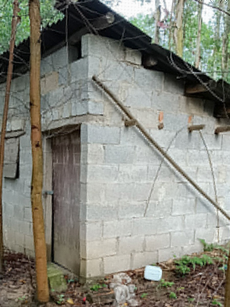 A small house built by Ling Dong. Courtesy of Ling Dong
