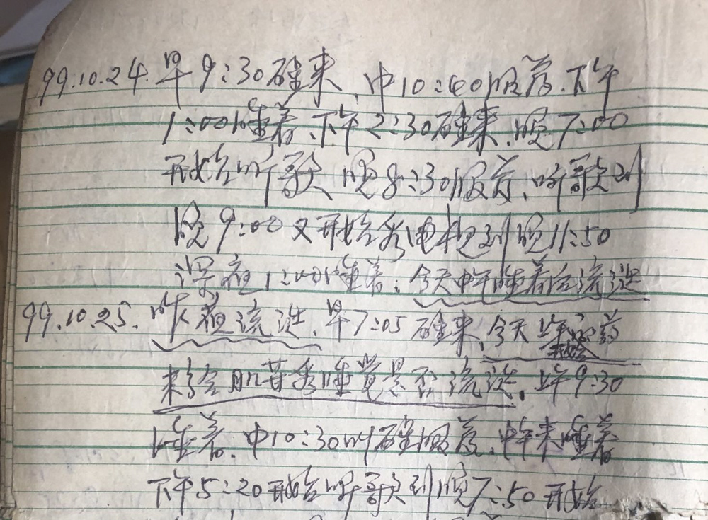 Details of Song Mingli's dairies for 1999. Courtesy of Liang Ting