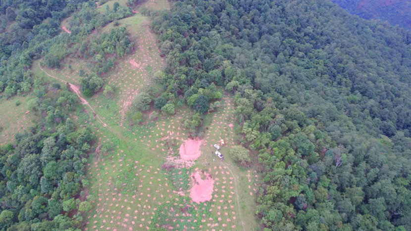 """An aerial view of the """"elephant canteen"""" in Yunnan province, 2021. From 景洪发布 on WeChat"""