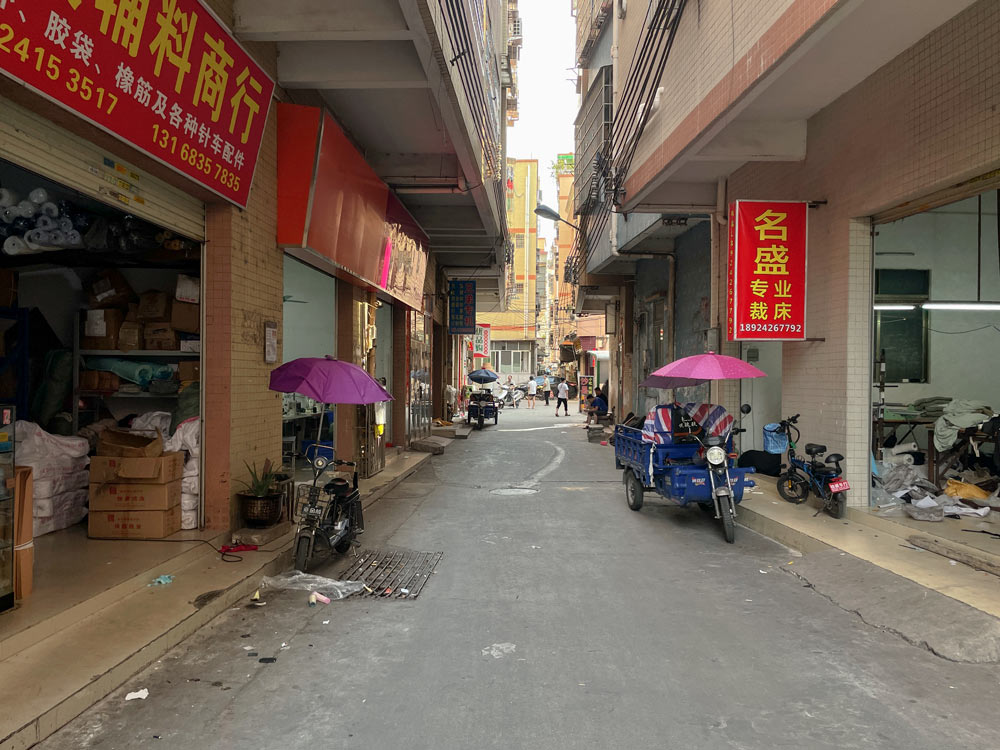 A view of a street in Tangbu West Village, Guangdong province, July 2021. Wu Peiyue for Sixth Tone