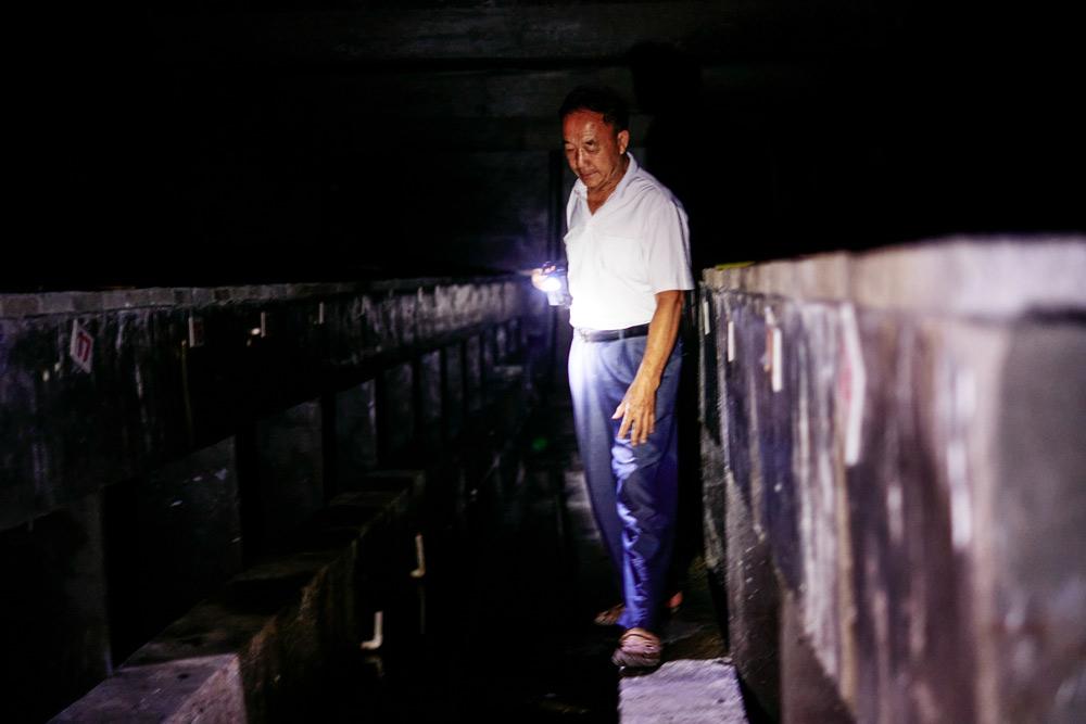 Chen Gongming walks through his Chinese giant salamander farm in Zhangjiajie, Hunan province, September 2021. Wu Huiyuan/Sixth Tone