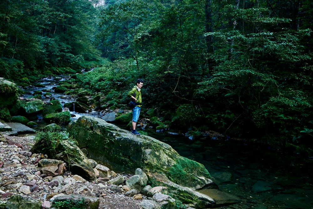 Jiang Wansheng looks at the Gold Whip River, a Chinese giant salamander habitat, inside Zhangjiajie National Forest Park, Hunan province, September 2021. Wu Huiyuan/Sixth Tone