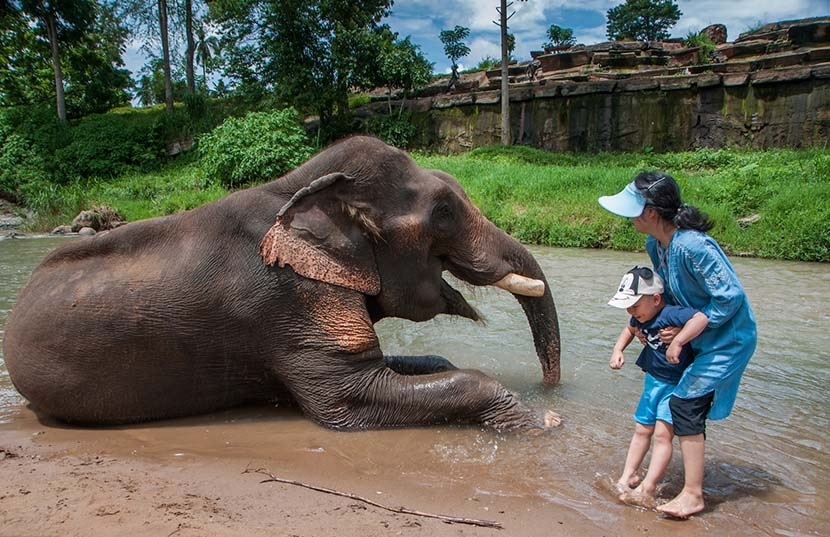 A mother holds on to her son as they approach an elephant during their trip to Thailand, June 22, 2017. Hou Kaiyu/IC