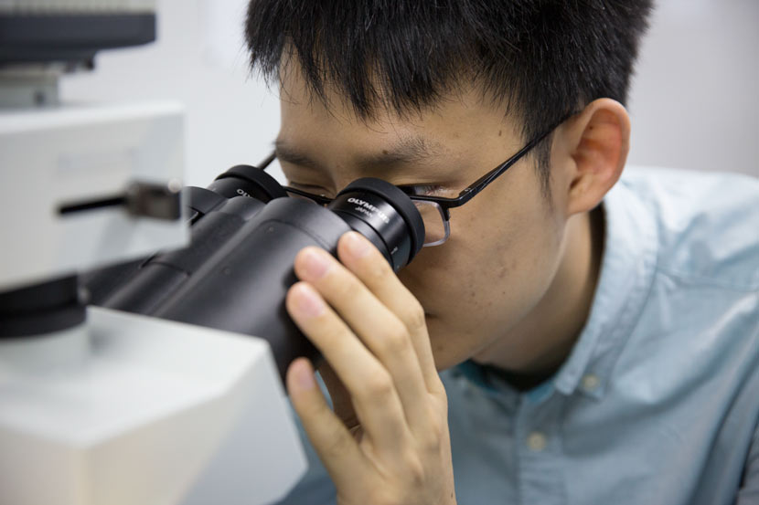 Researcher Jiang Tao looks through a microscope at his lab in Suzhou, Jiangsu province, Oct. 10, 2017. Shi Yangkun/Sixth Tone