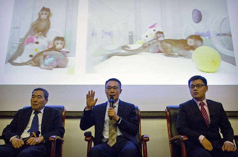 Sun Qiang (center), director of the Institute of Neurosciences' nonhuman primate facility, speaks during a press conference at the Chinese Academy of Sciences in Beijing, Jan. 24, 2018. IC