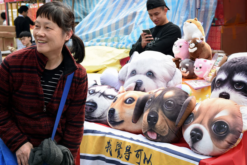 A woman poses for a photo with dog-pattern pillows in Hong Kong, Feb. 11, 2018. IC