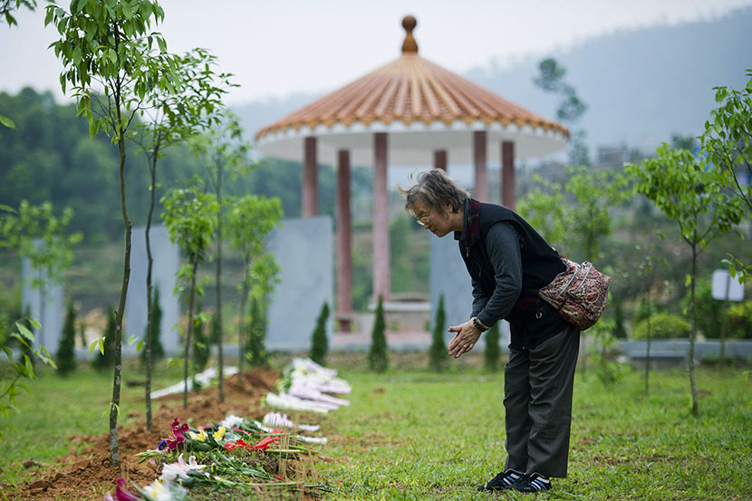 A woman bows to her relative's remains during a tree burial ceremony in Dongguan, Guangdong province, April 24, 2014. VCG